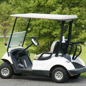 Golf Cart Batteries Speciality Batteries